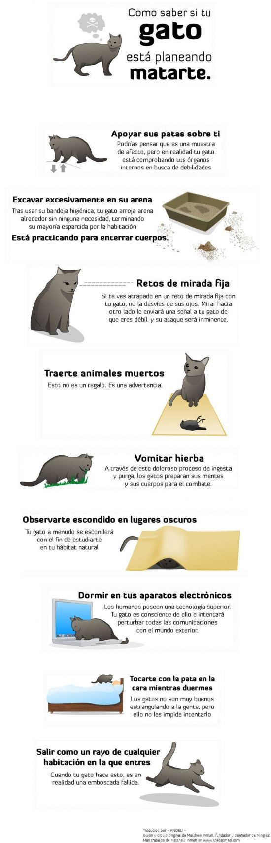 Otros - Ándate con mucho cuidado con los gatos