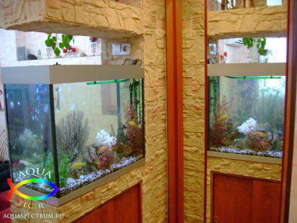 Пресноводный аквариум объёмом 180 литров установленный на перегородку