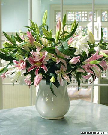 Pink Lilies Arrangement  To create an eye-catching palette of pinks, Martha uses the pale, blushing L. Orientalis 'Broadway'; the bright-fuchsia L. Orientalis 'Stargazer'; the soft-coral L. 'Le Reve'); and the pure-white 'Casablanca.' Keep in mind, however, that several other varieties will produce a similar effect, and with more than one hundred species and thousands of cultivars, you should have plenty of lilies from which to