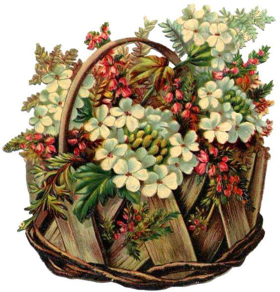 Victorian Flower ♥