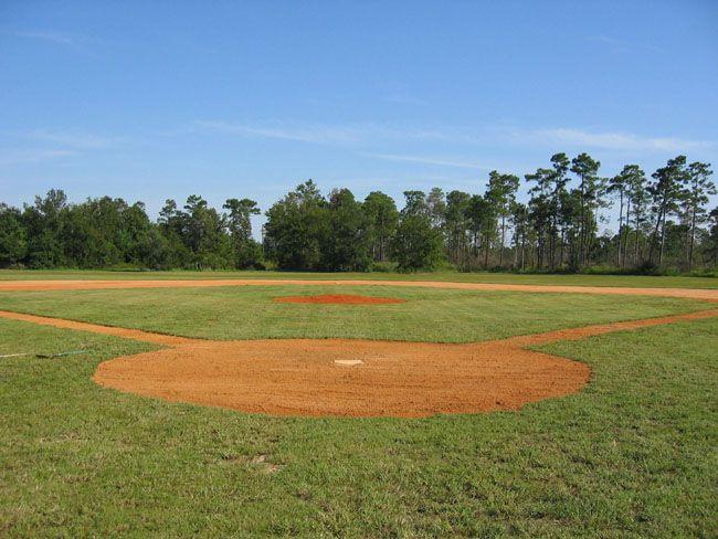 baseball field in backyard