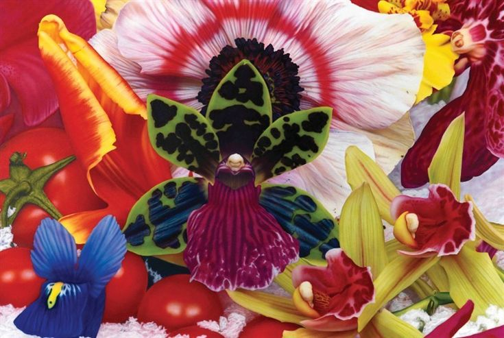Marc Quinn...beautiful. Its a painting!! Picture perfect.