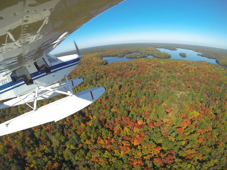 Found over Trout Lake, Parry Sound September 2014
