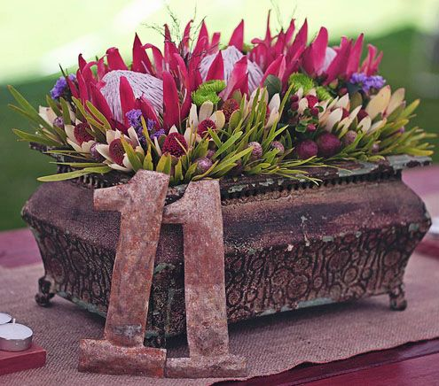 Beautiful outdoor garden design - Red Kings and flowering Leucadendron!