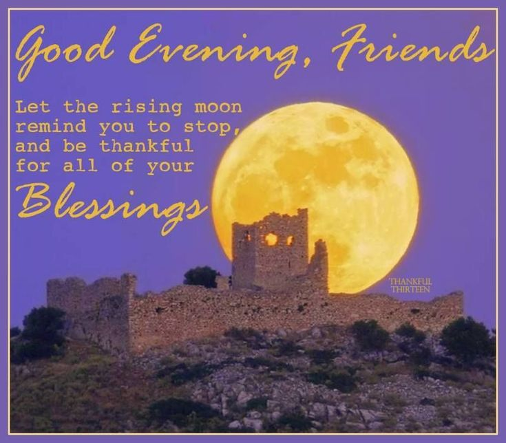 Good Evening Quotes And Sayings: Good Evening/Good Night