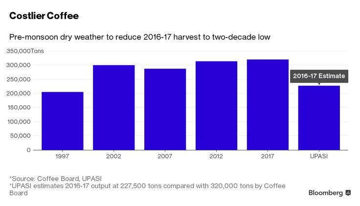 Caffè: terribile la situazione in India - Materie Prime - Commoditiestrading