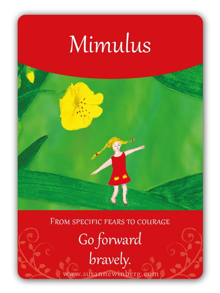 Mimulus - Bach Flower Oracle Card by Susanne Winberg. Message: Go forward fearlessly!
