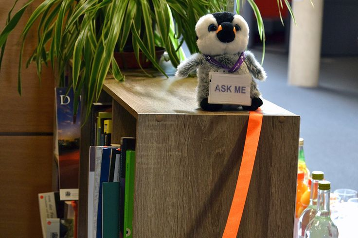 pip wants to help you find a book #happiness