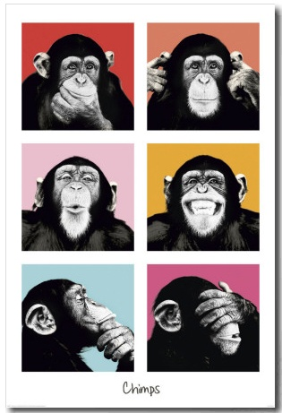 Three colourful wise monkeys  http://www.allposters.es/-sp/The-Chimp-Pop-Posters_i8465020_.htm