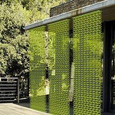 garden privacy screen ideas - Google Search