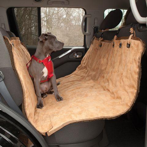 best 25 dog car hammock ideas on pinterest. Black Bedroom Furniture Sets. Home Design Ideas