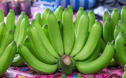 Ingredientes: 1 cacho de bananas verdes Modo de fazer: Lave as bananas verdes com casca, uma a uma, utilizando uma esponja com água e sabão eenxágüe bem (
