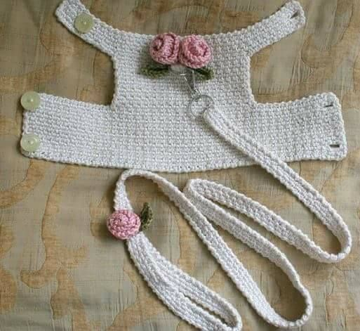Leash and harness set for that special mini dog