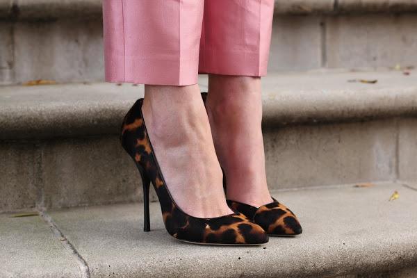 Zapatos. Giuseppe Zanotti: Leopards Shoes, Leopards Heels, Leopards Pumps, Soft Pink, Pastel Pink, Pink Pants, Animal Prints, Leopards Prints, Cheetahs Prints