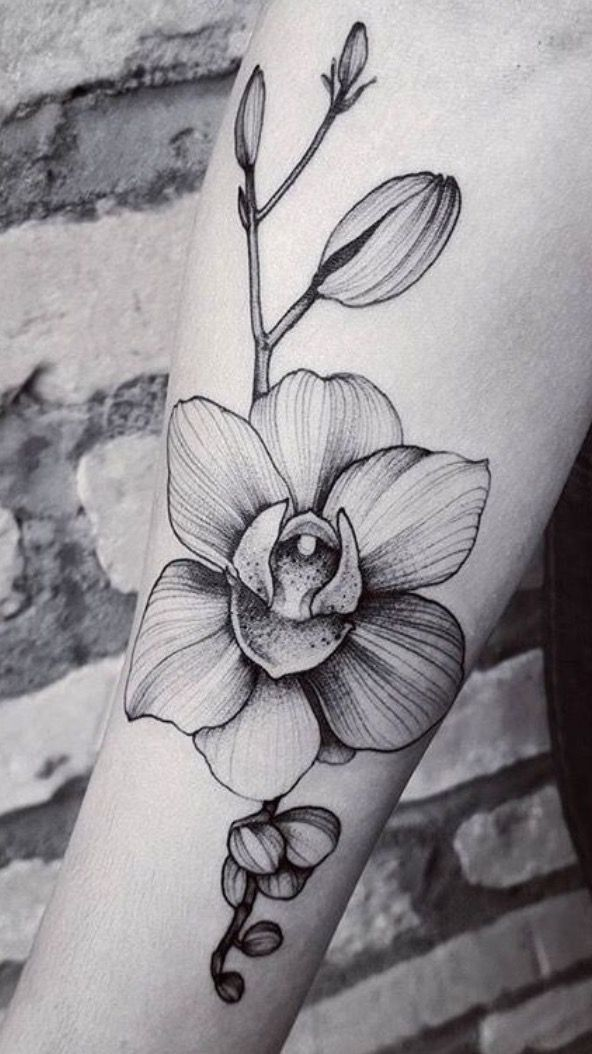 Image Result For Black And Grey Orchid Tattoo Tatuaggi Braccio Idee Per Tatuaggi Tatuaggi