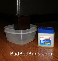 Surfaces Bed Bugs Can T Climb