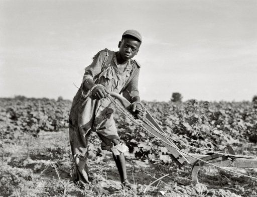 """July 1937. """"Thirteen-year old sharecropper boy near Americus, Georgia.""""   Shorpy Historical Photo Archive"""