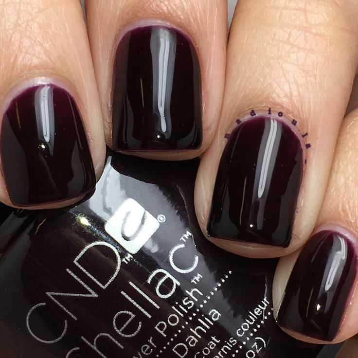 """Nadia on Instagram: """"@cndworld Shellac Dark Dahlia. I used CND Base Coat, 2 coats of Shellac Dark Dahlia, and topped off with CND Shellac Xpress5 Top Coat. Cured in the CND LED Lamp."""""""