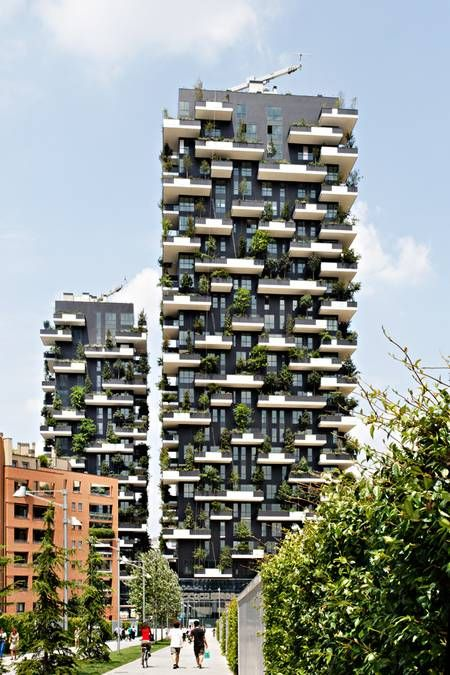 long shot bosco verticale