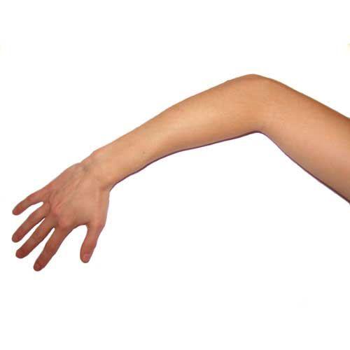 braccio - Cerca con Google