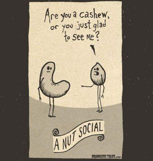 Nut SocialFunny Wordsgigglehumor, Brainless Tales, Funny Words Giggles Humor, Funny Cartoons, Funny Stuff, Nut Social, Sayingsfunni Quotes, Funky Stuff, Art Baby