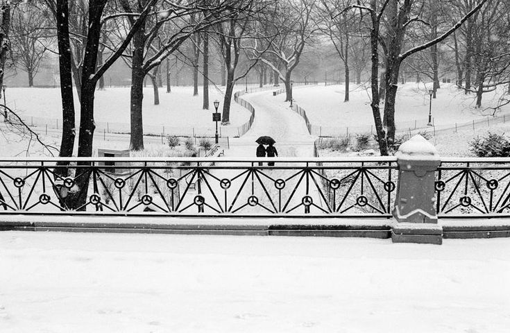 Central Park Snow Photograph by Dave Beckerman