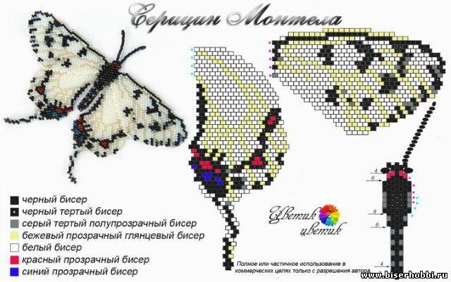 Beaded Butterfly PATTERN   Marina Biryukova   white