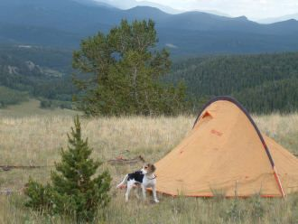 Going camping soon? Check this out, so many camping checklists to ensure you're prepared!