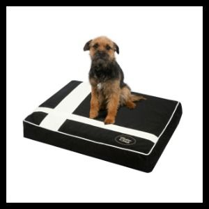 Chester & Wells Bristol Dog Cushion - Sale Now On