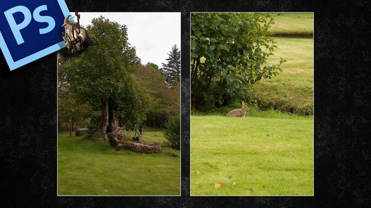 Igualar tonos e iluminación con Ajuste de Curvas entre dos imágenes en Photoshop