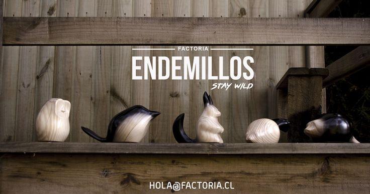 Endemillos, by architect Susana Herrera  Handmade craft design