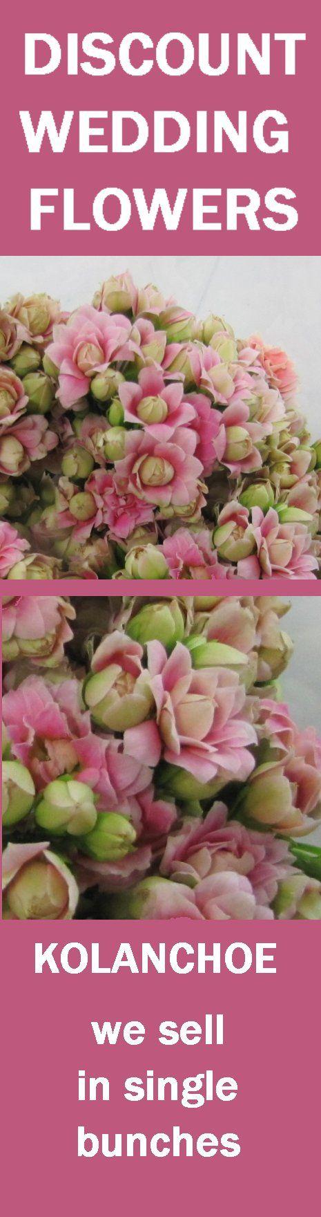 31 Best Images About Kolanchoe Wedding Flowers On Pinterest