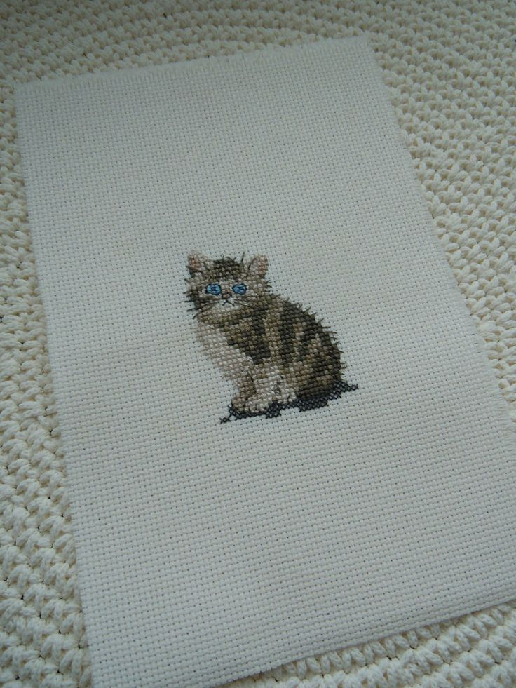 Tabby Kitten by Heritage Stitch Crafts