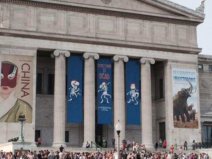 Chicago Field Museum | Field museum chicago, Field museum, Grateful dead