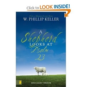 Shepherd looks at the 23rd psalm really a look at god s tender love