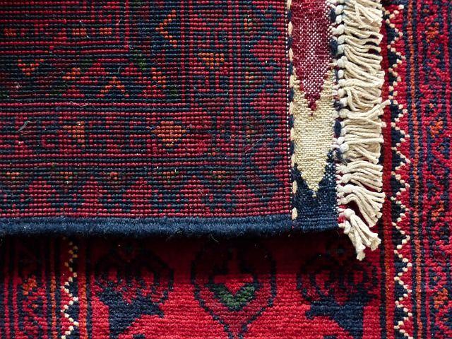 Unkempt Carpets: 4,000 Times Dirtier than Your Toilet - http://newscollection.net/services/unkempt-carpets-4000-times-dirtier-than-your-toilet/