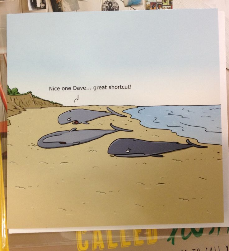 Humorous Whale beaching card (if that's possible?) - from Wulffmorgenthaler