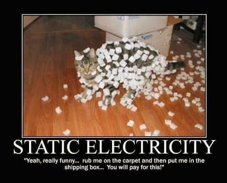 Static electricity. Pinned From Junglegag - Click for more!  Too funny!