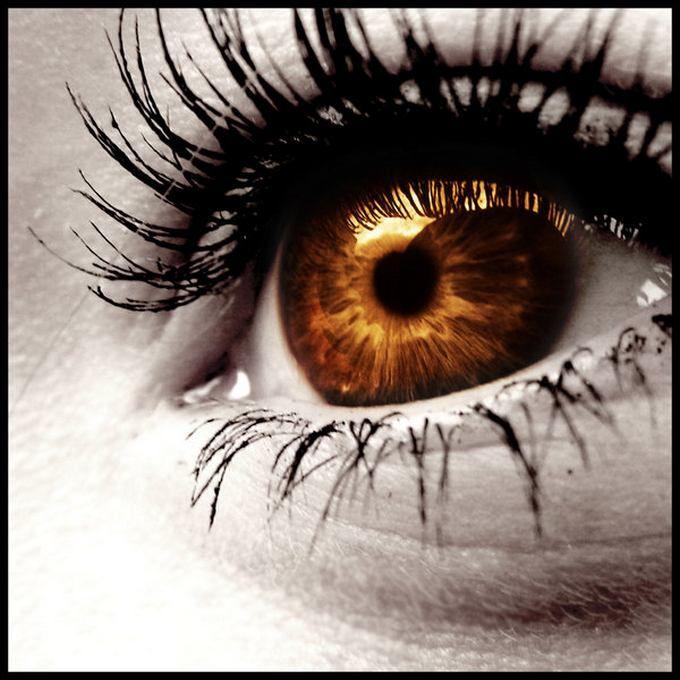 :) 5 of my 12 grandkids have brown eyes, like me