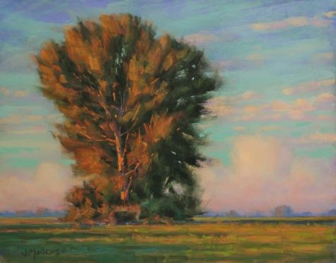 An August Memory tree landscape 11x14 Pastel, painting by artist Joe Mancuso: Galleries Artists, Mancuso Pastel, California Artists, Pastel Paintings, Art Pastel, Memories Trees, Artists Joe, 11X14 Pastel, August Memories