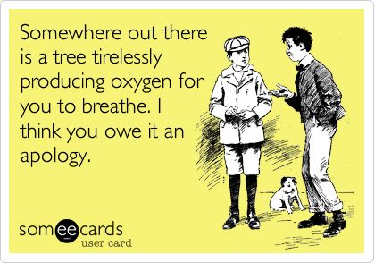 Somewhere out there is a tree tirelessly producing oxygen for you to breathe. I think you owe it an apology.