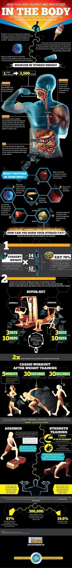 How Can You Burn Your Stored Fat? Understanding Weight Gain, Fat Loss, and Energy Use for the Calories we Consume [Infographic]