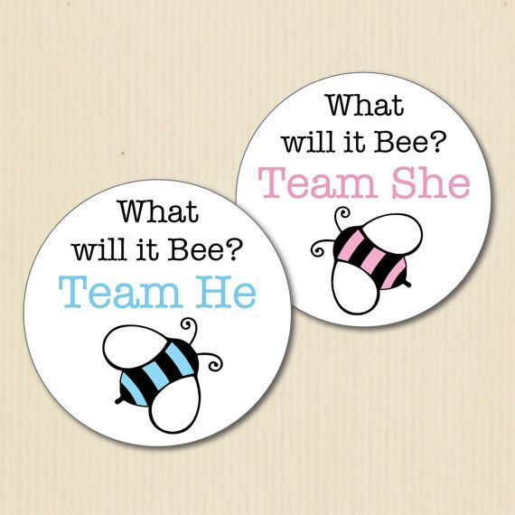 BUMBLE BEE Gender Reveal Party Stickers, What will it Bee, Team He, Team She, Baby Shower, Team Pink, Team Blue, Team Boy, Team Girl