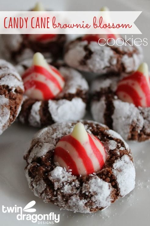 Candy Cane Brownie Blossom Cookies