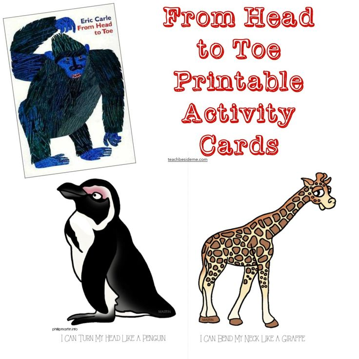 From Head to Toe Activity Cards.  Repinned by playwithjoy.com.  For more early learning pins visit pinterest.com/playwithjoy.