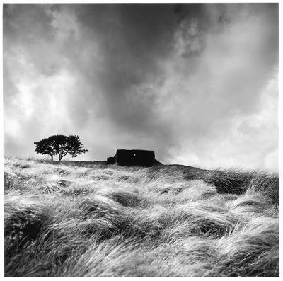 Fay Godwin's Picture, famous landscape photographer.