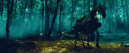 The Elder Wand is the only wand known to contain by the thestral, a beast that can only be seen by those who witnessed the death.   30 fatos sobre Harry Potter que lhe darão vontade de reler a série (de novo)