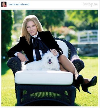 """DOLLY NEWS Barbra Streisand joined Instagram! She wrote, """"Hello Instagram… isn't my Samantha just precious?"""" to go along with her first post ❤ Dolly"""