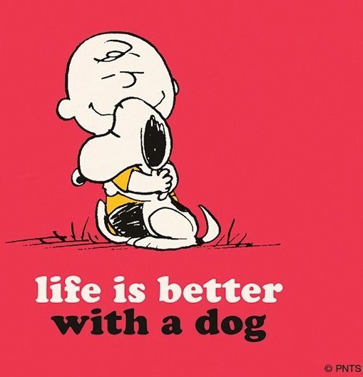#Dogs #Quote #Life #Better #Animal #CharlieBrown #Snoopy #Disney