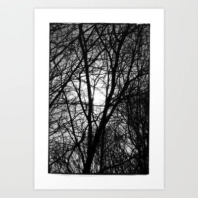 Norwegian forest IV Art Print by Plasmodi - $17.00